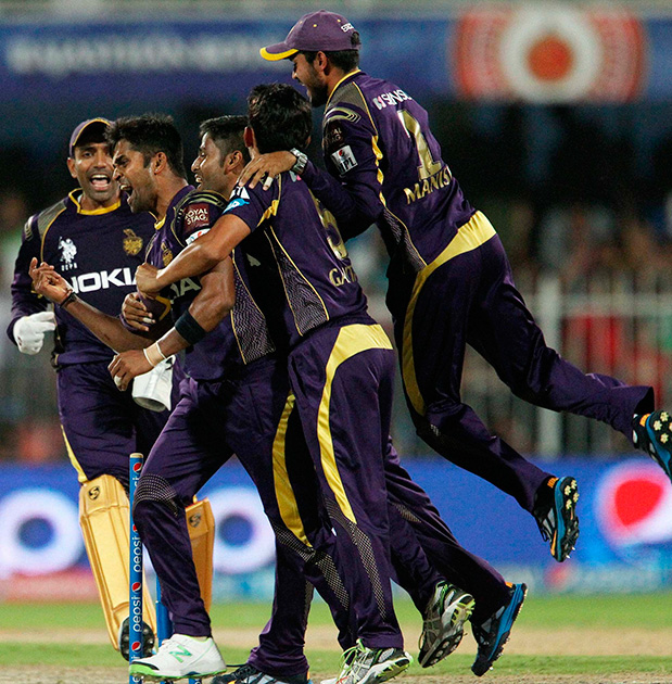 Ranganath Vinay Kumar of the Kolkata Knight Riders celebrates the win for KKR during their IPL 7 match against Royal Challengers Bangalore in Sharjah.